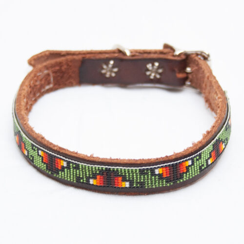 Small Green Dog Collar