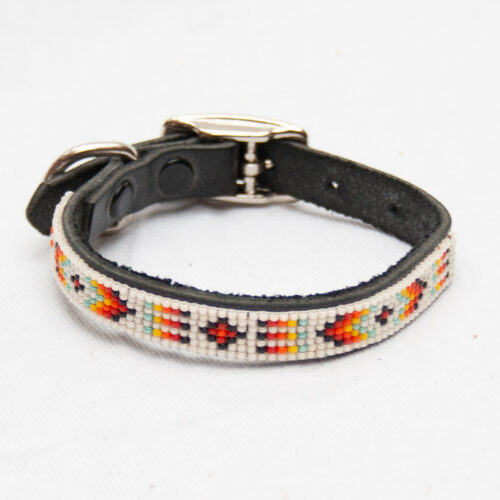 Small White Dog Collar