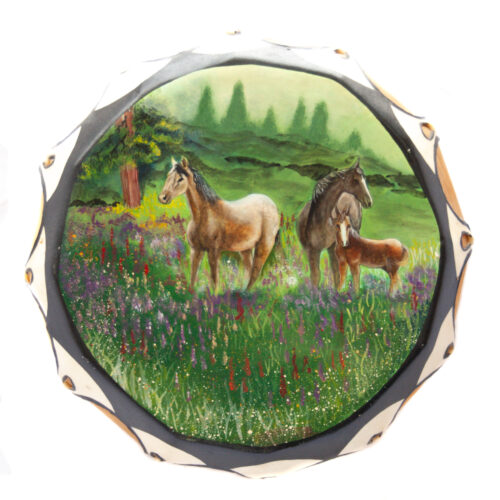 Native American Horses In Meadow Drum
