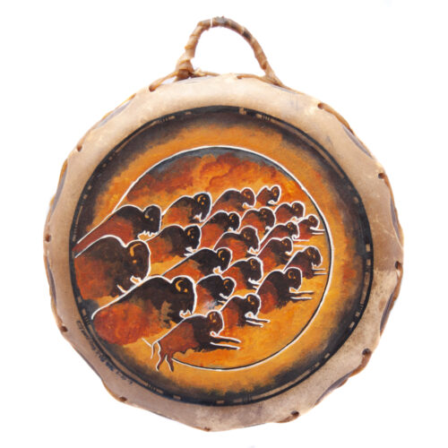 Native American Bison Herd Shamanic Drum