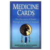 The Medicine Cards Deck & Guidebook Set - David Carson